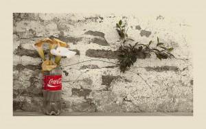 Coke, callas and plant